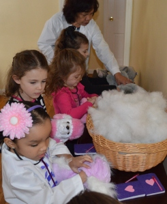 Purchase stuff-your-own animal kits online for Doc McStuffins birthday party